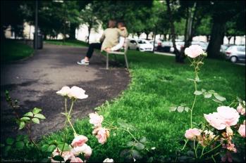 Le printemps s'achève mais notre amour continue