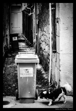 gestion des ordures